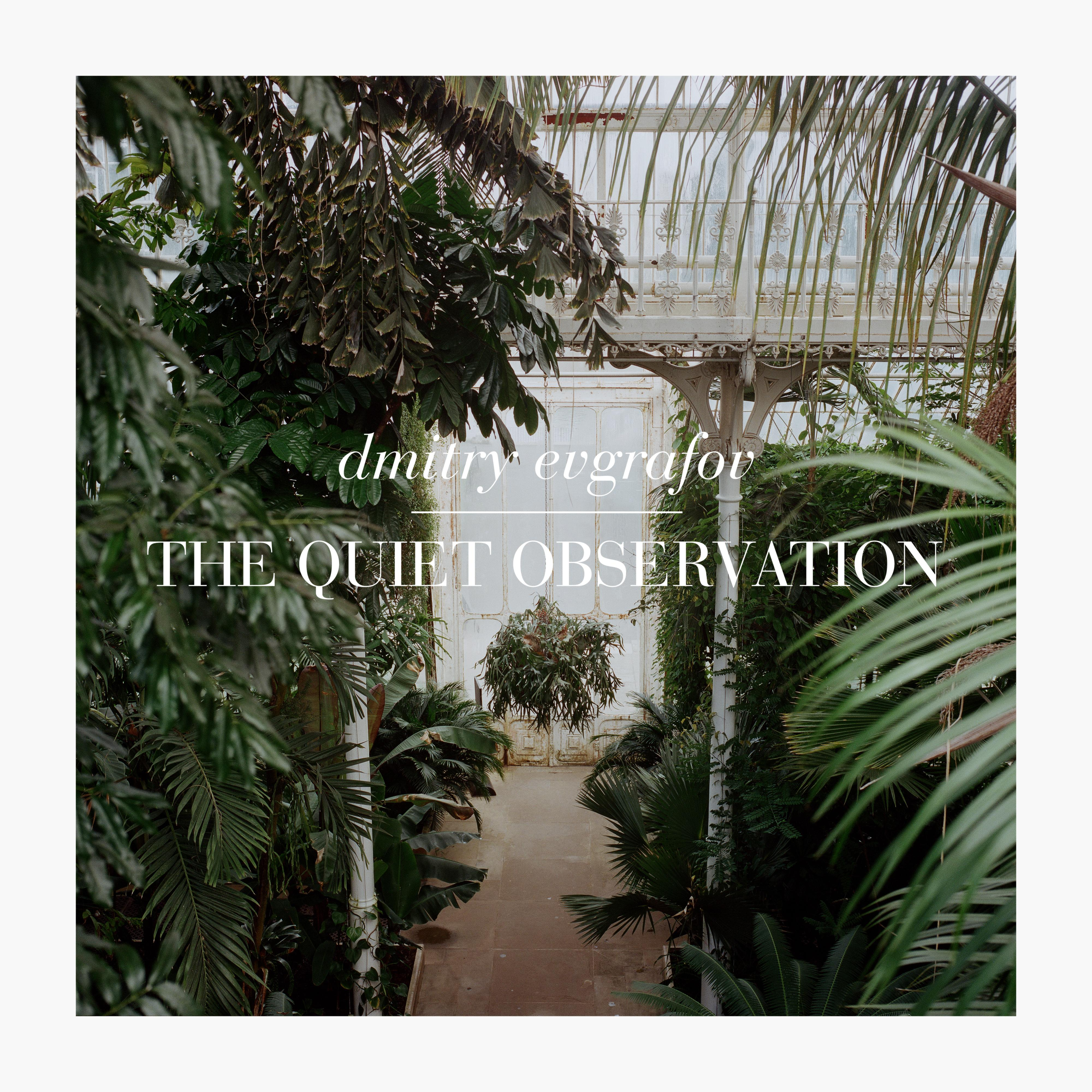 The Quiet Observation